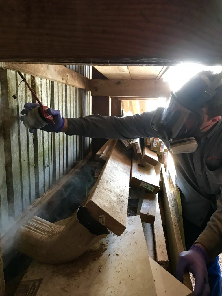 Carpenter Bee Control & Removal Services in Manassas VA